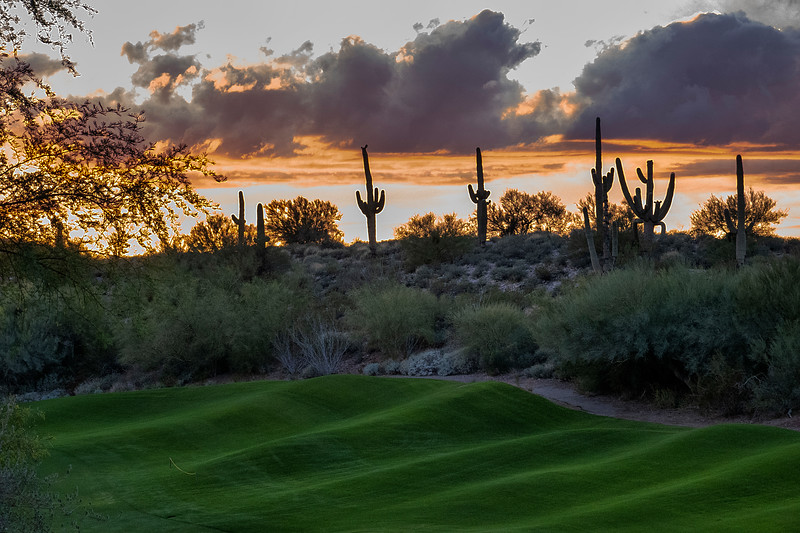 La Paloma Resort, Tucson, Arizona