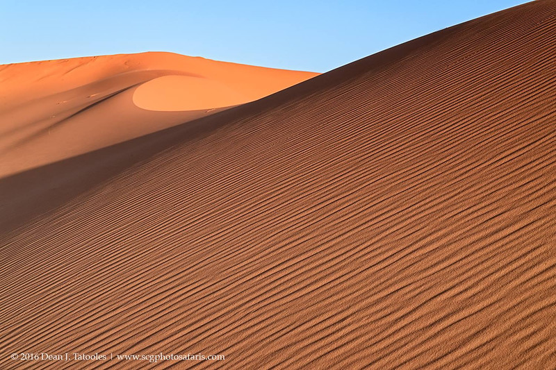 Sweeping Dunes