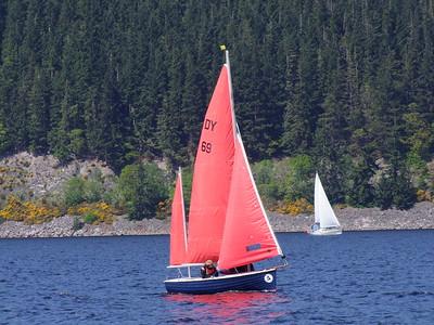 Sail Cal 2016 (487)