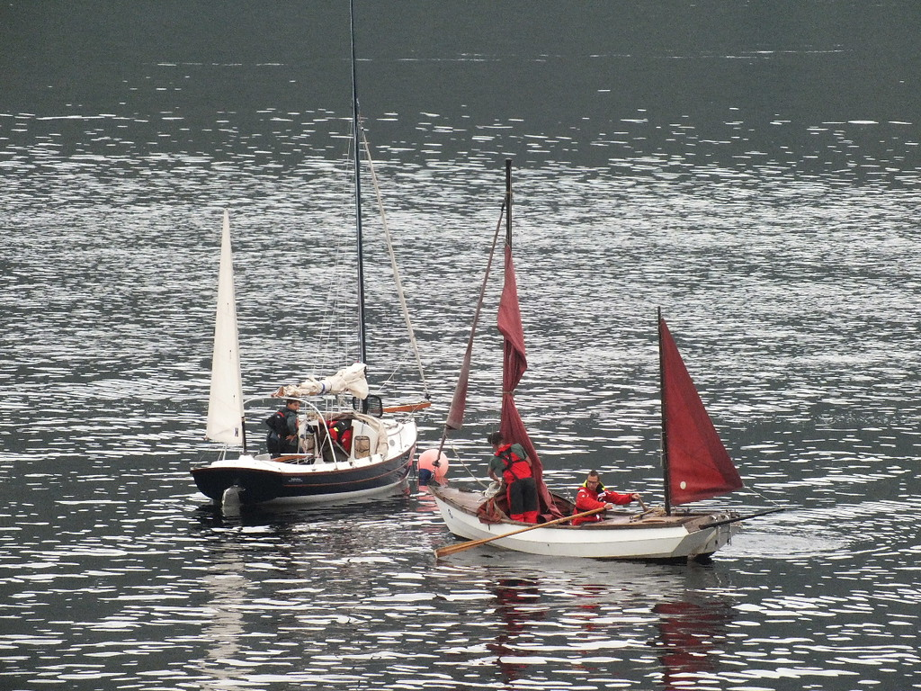 Sail Cal 2017 (003)