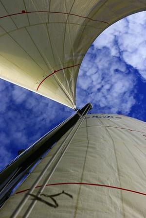 Sail the Sea