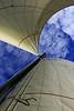 Sail the Sea :