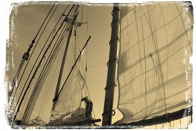 Waves of sails