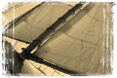 Freedom and Sail