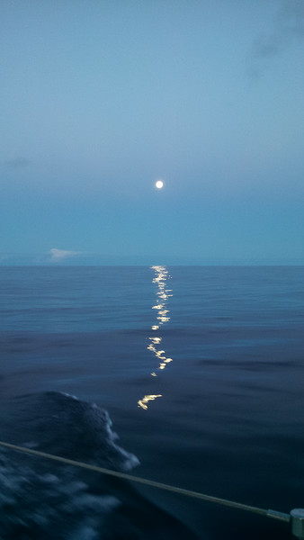 John Harold Koh-Ring Moonrise mid Pacific (1)