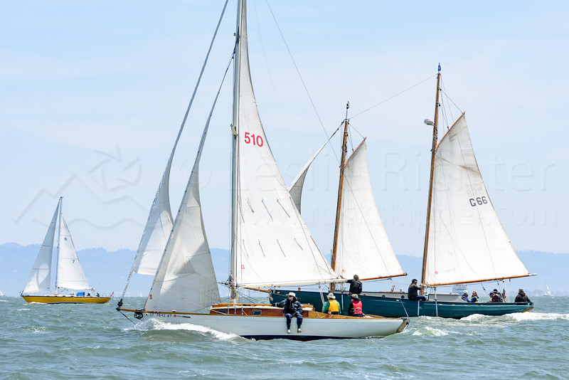 Master Mariners Race