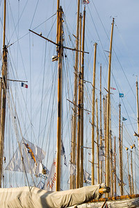 Masts in the harbor.