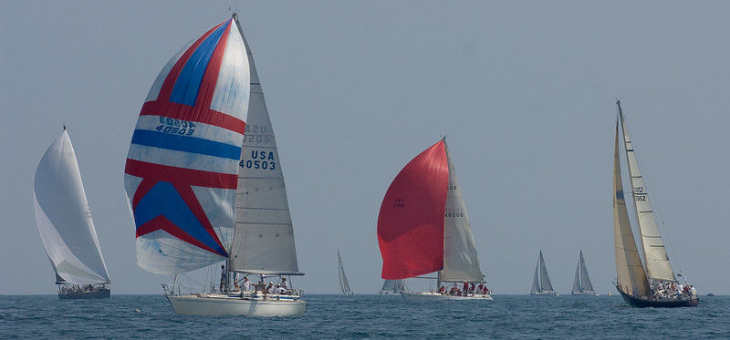 Leda, Swan 391;  Senta, Swan 46