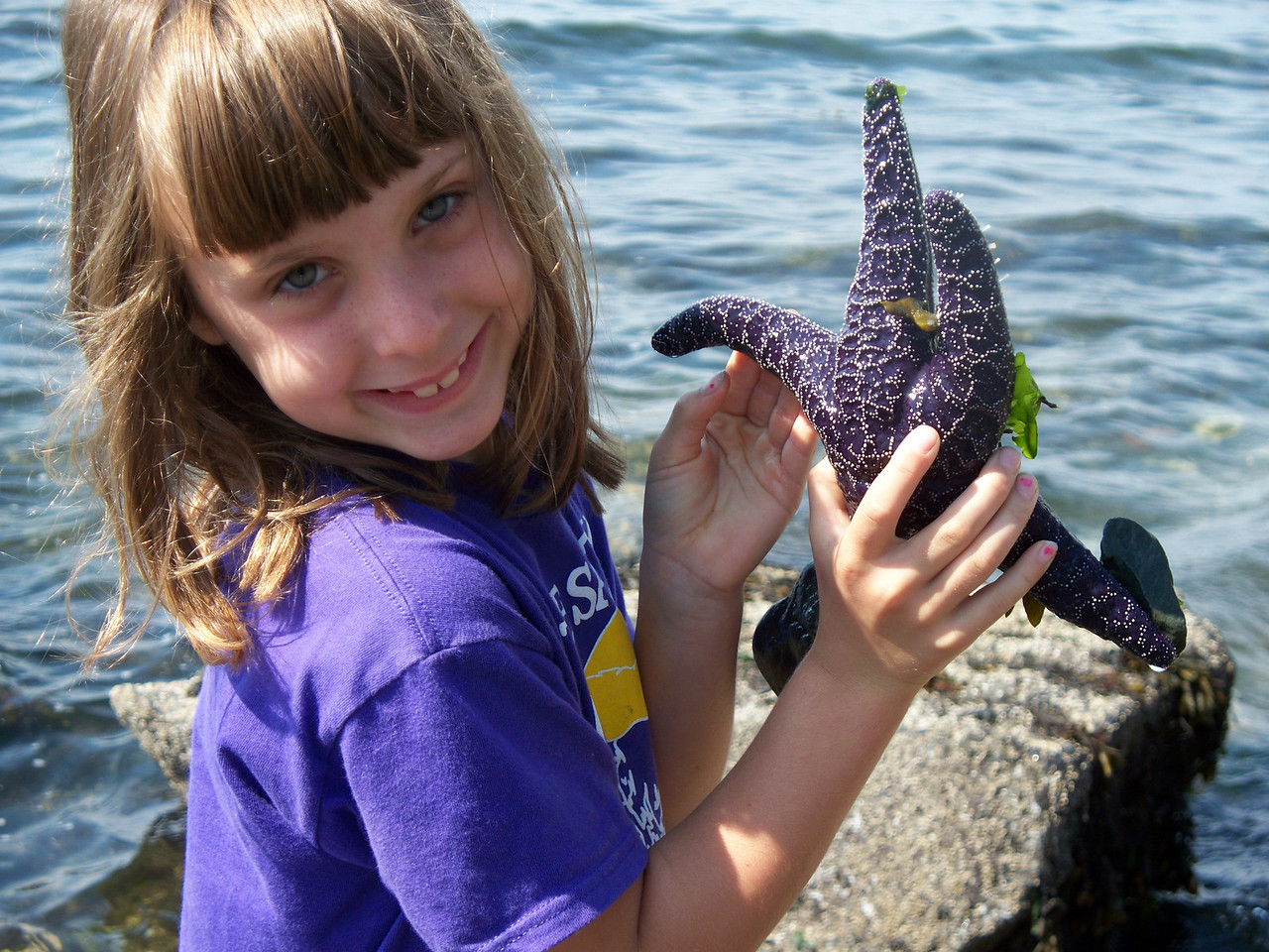 On Friday morning, Abby found a starfish at low tide at Fox Cove.  (pic by Sonia)