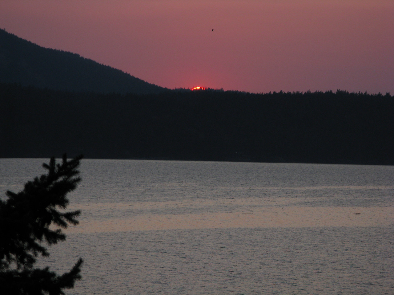 Saturday evening, we watched the sun set over East Sound from Rosario.  This was our last night in the islands.
