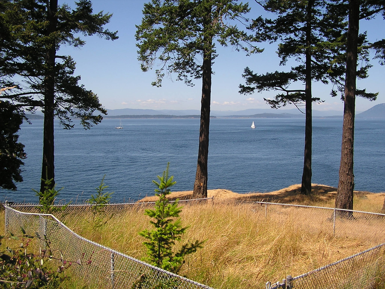 the view from the lighthouse on Stuart Island