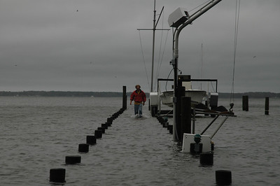 Dixon Cole walking down the dock on Fishing Bay.