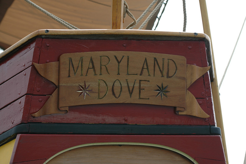 Maryland Dove