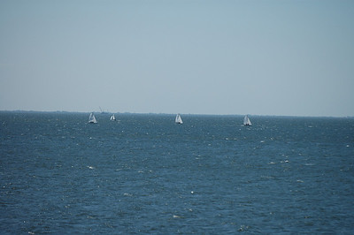 Front Runners racing upwind as seen from the deck of the club.