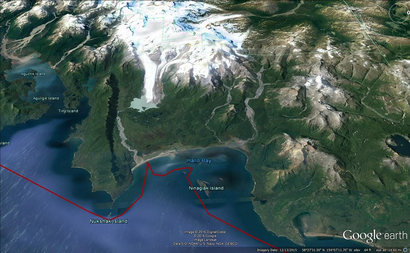 Hallo Bay Overview