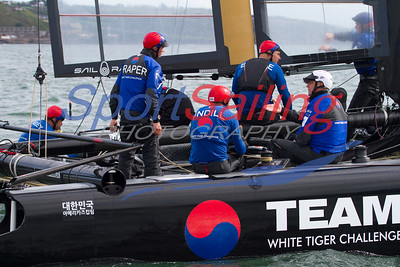 White Tiger Team Korea