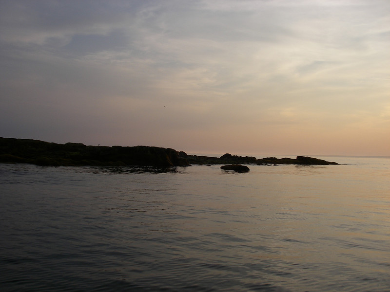 Shark Island – looks pretty substantial with the tide out, huh?