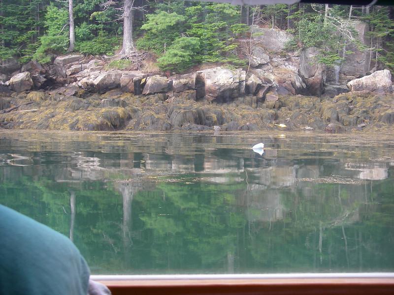 Anchored behind Witch Island, Maine – more John's Bay.  July, 2012.  Photo: Shemaya Laurel