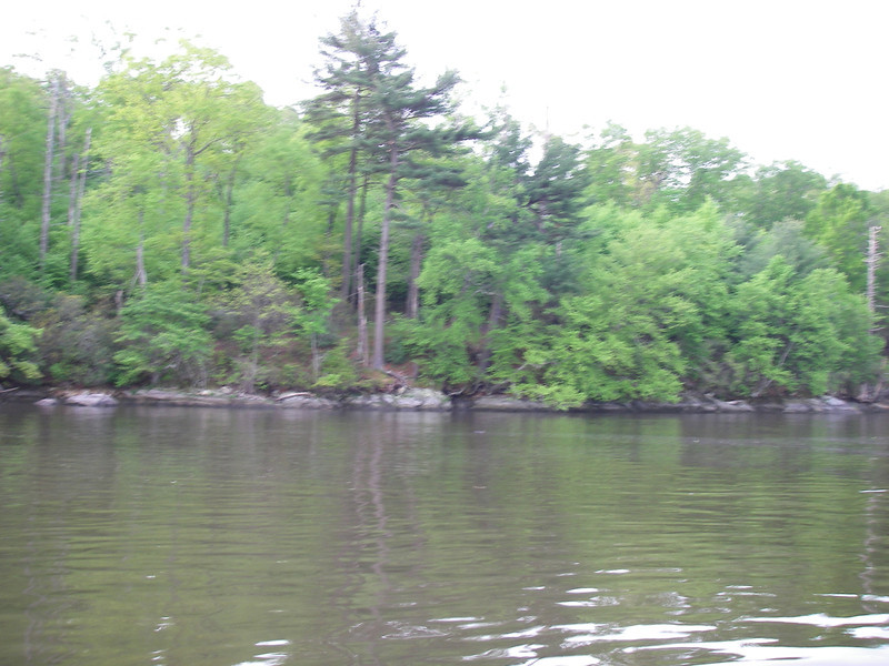 And the soft green leaves, when they first came out, going south from Deep River.