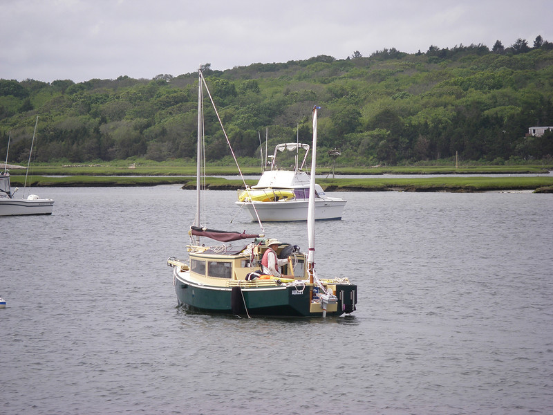 Westport, MA, in the river.  Photo: Suzanne Jean