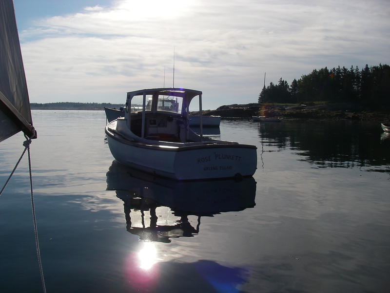 Mouth of the creek at Greens Island, ME – what a peaceful morning!  Photo: Shemaya Laurel