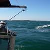 Approaching Cuttyhunk Island, Buzzards Bay, MA.