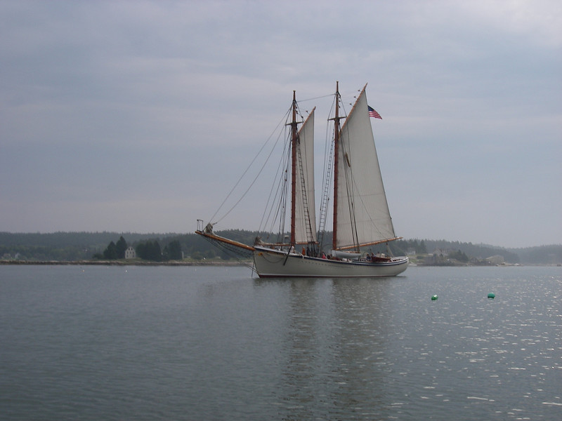 Swans Island, ME, with a gorgeous Windjammer.