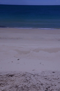 Sand cliff and white sands of Fraser Island.