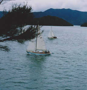 Sailing in the Marlborough Sounds, New Zealand.