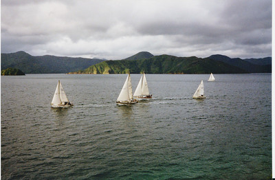 In the pack, Marlborough Sounds, New Zealand.  In these winds she would have easily carried the Number 3, perhaps the Number 2, but winds in the Sounds can be very unpredictable.