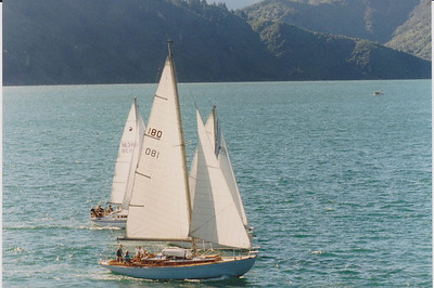 A handy sloop, racing in the Marlborough Sounds with cruising main and working jib.