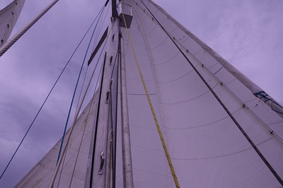 Foremast view aloft, with jib staysail and genoa set; just at extreme left is main staysail.