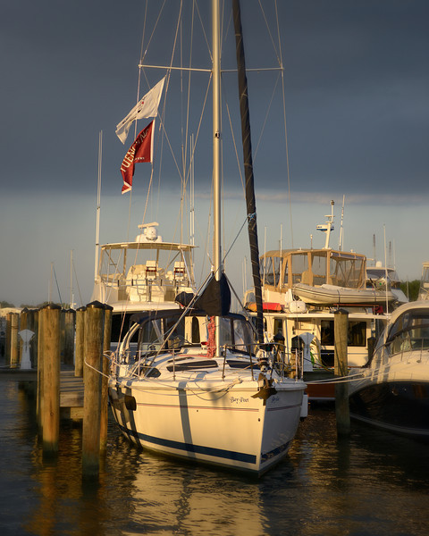 """Bay Poet"" in Late Afternoon Light"