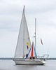 Changing Sail in Hopes for More WInd