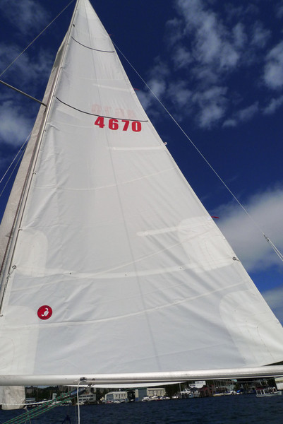 New mainsail!  So much nicer than my old one, thanks Ballard Sails.