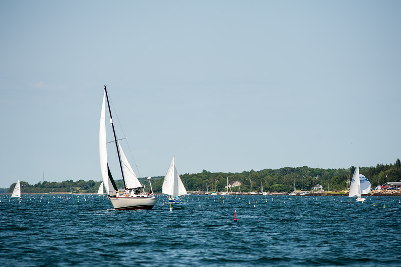 Hank, Panacea, & Nessie run downwind to Cox Ledge while Voyager tacks toward Intervale