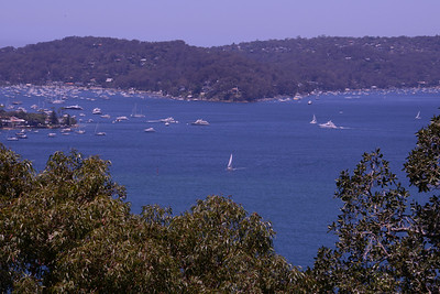 View of the Pittwater from West Head.