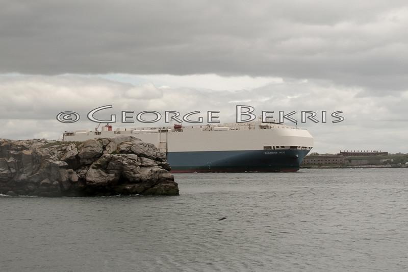 Atlantic Cup Newport 5-27-1013  George Bekris-181