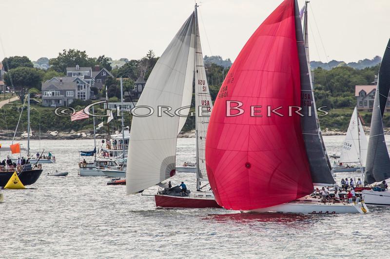 Newport_Bermuda_2014_george_bekris_June-20-2014_-417
