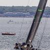 Newport_Bermuda_2014_george_bekris_June-20-2014_-765
