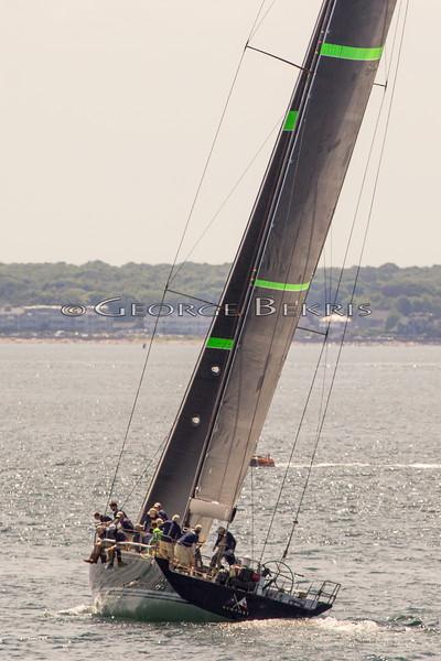 Newport_Bermuda_2014_george_bekris_June-20-2014_-758