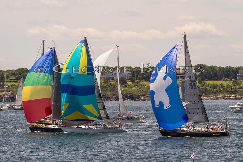 Newport_Bermuda_2014_george_bekris_June-20-2014_-674