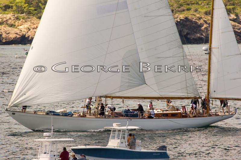 Newport_Bermuda_2014_george_bekris_June-20-2014_-495
