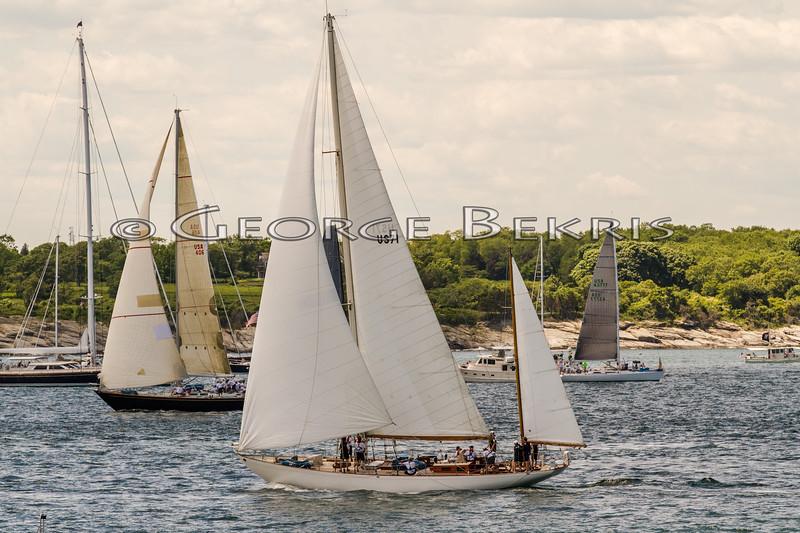 Newport_Bermuda_2014_george_bekris_June-20-2014_-840