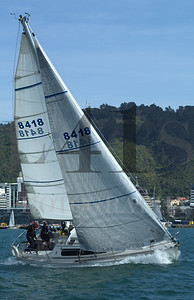IB2019_06
