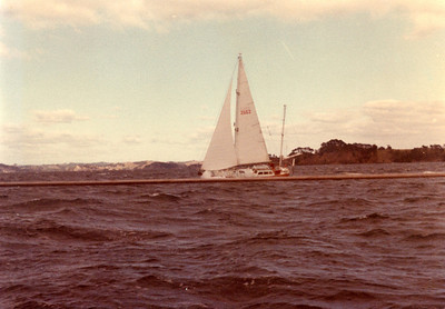 "Sailing back from Kawau, ""Donata Polo"" built by Mr. Tony Armit, who is a famous Kiwi yachtsman who sailed his Wollacott ""Marco Polo"" ketch all over the Pacific.  This, his second boat contains all his thinking about the ideal ocean cruising yacht, about 42 ft, and probably a yawl.  Note deckhouse."