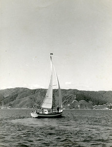 """""""Marco Polo"""" in Wellington Harbour."""