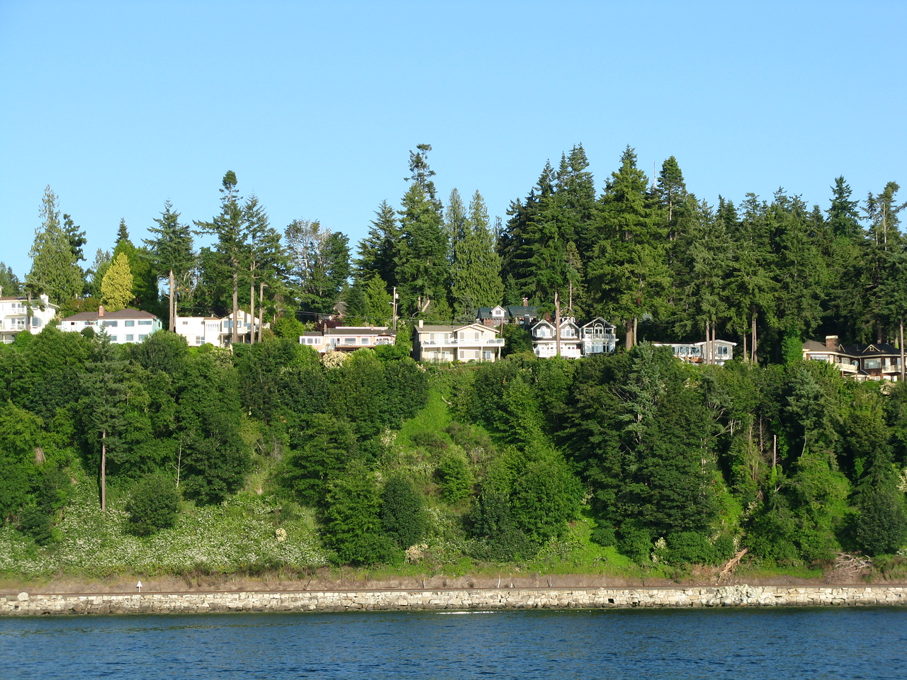 I sailed north from Edmonds along the eastern shore of  Puget Sound.  The road above the bluff here is called Olympic View Drive.  From the road, you cannot tell that the bluff is as steep as it  is.