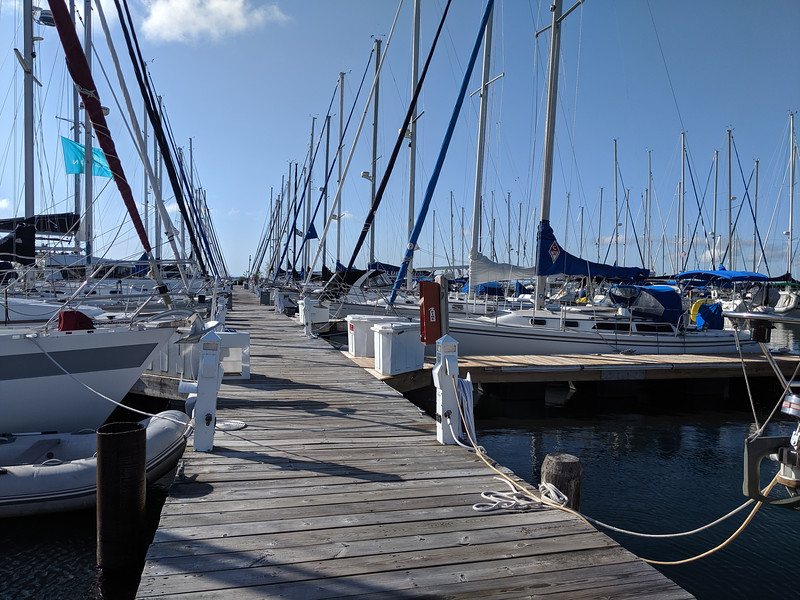 Quite a few sailboats at Pike's Bay Marina.