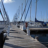 Quite a few sailboats at Pike's Bay Marina.